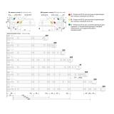 Роликовые направляющие DS01W.1/550 BOYARD